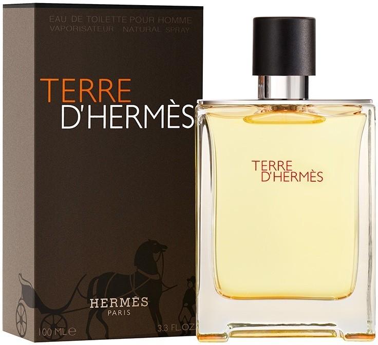 Hermes Terre D´Hermes, Toaletní voda, 100ml, Pánska vôňa, + AKCE: dárek zdarma