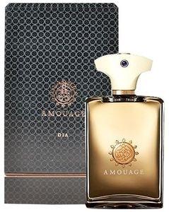 Amouage Dia Pour Homme, Parfémovaná voda, 100ml, Pánska vôňa